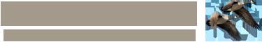 The Dinney B&B Logo
